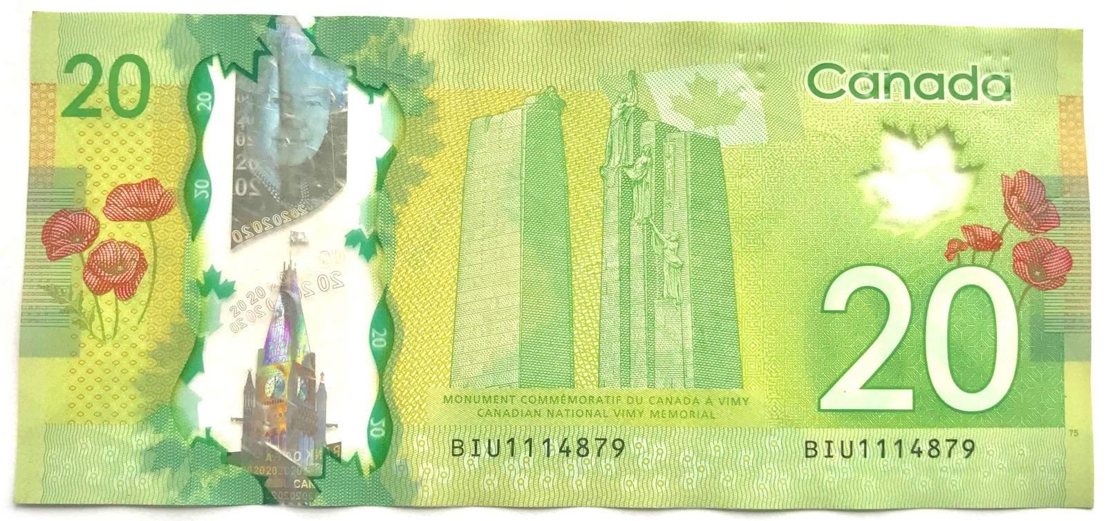 تصویرپشتاسکناس 50 دلاری کاناداهم متعلق به یادبود سربازان کانادایی جنگ جهانی اول میباشد