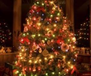 زیباترین درختان کریسمس