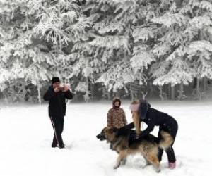 تصاویر زیبا از زمستان سیبری