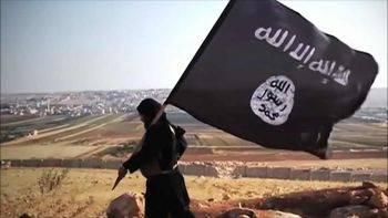 آینده نا معلوم عروس های داعش