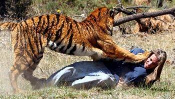 وحشتناک ترین حمله ی حیوانات به انسان ها