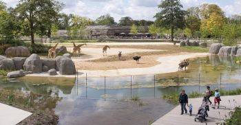 باغ وحشی در فرانسه