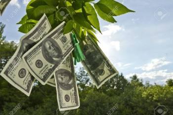 قیمت دلار سبزه میدان چنده؟